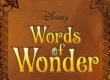 Words of Wonder game